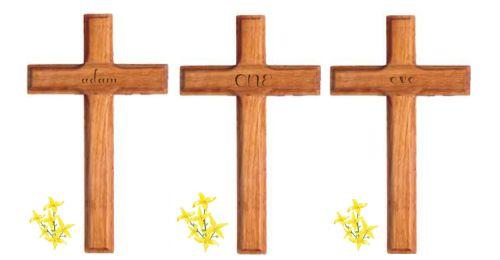 3 crosses 500x260